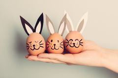 Three little Easter bunnies made from an egg. Held by woman`s hand. Christianity traditions. Easter egg Royalty Free Stock Images