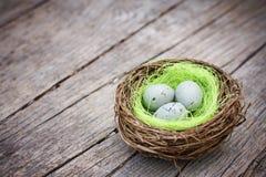 Three little eggs in bird nest. On wooden table stock photo