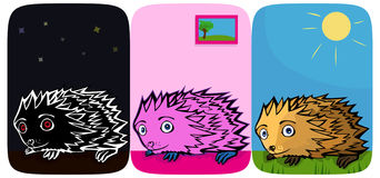 Three little funny Hedgehogs Royalty Free Stock Image