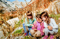 Three little girlfriends hiking and picking flowers Durmitor, Mo Stock Images