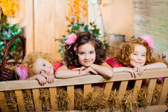 Three little girls, cute kids Stock Photos
