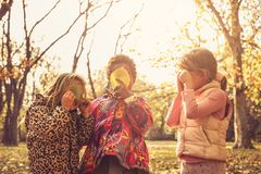 Three little girls in park. stock photography