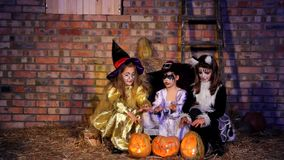 Three Little Halloween Witching Doing Magic With stock video footage