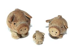 Three little pigs. The three little pigs isolated on a white background Stock Image