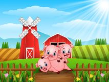 Three little pigs playing together. Illustration of Three little pigs playing together Stock Photo