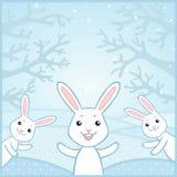 Three little rabbits Stock Image