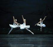 Three Little Swan good jump-ballet Swan Lake Stock Photo