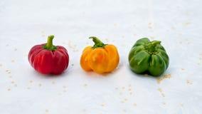 Paprikas. Three little tiny paprikas, vegetables Royalty Free Stock Photography