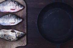Three live carp fish in a scales on a kitchen board Royalty Free Stock Photos