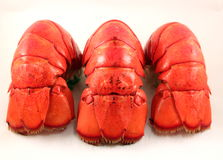 Three Lobster Tails Stock Photos
