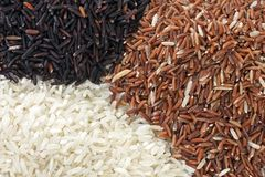 Three local rice Royalty Free Stock Images