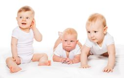 Three looking babies crawl and sit on blanket Stock Photos