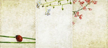 Three lovely background textures Royalty Free Stock Photography