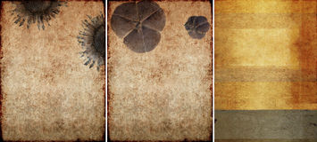 Three lovely background textures Stock Image