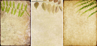 Three lovely background textures Royalty Free Stock Image