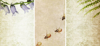 Three lovely background textures Stock Photos