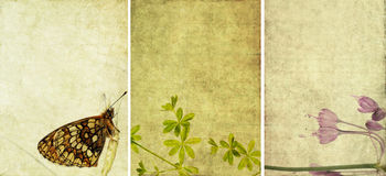 Three lovely background textures Stock Photo