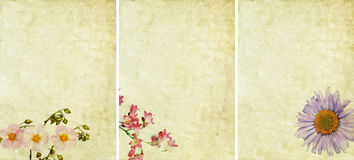 Three lovely background textures Stock Photos