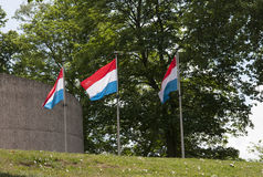 Three Luxembourg flags flying Royalty Free Stock Image
