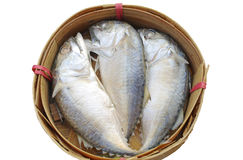 Three Mackerel fish in basket. On white background Royalty Free Stock Photography