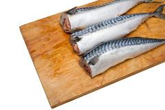 Three mackerel without head on a wooden Board isolated Royalty Free Stock Image