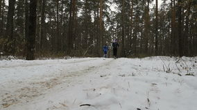 Three male runner running on snow trail in pine forest. Ekaterinburg, Russia - November 26, 2016: three male runner running on snow trail in pine forest during stock footage