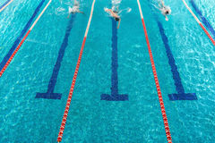Three male swimmers racing against each other. In a swiming pool Stock Images