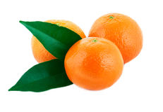 Three mandarin. With green leaves isolated on white background Royalty Free Stock Photos