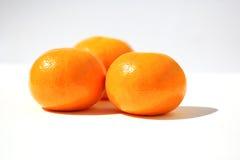 Three Mandarine. Over white background royalty free stock images