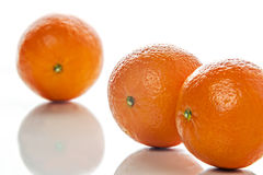Three mandarines Royalty Free Stock Images