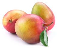 Three mango with leaf Stock Photos