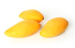 Three mangoes Stock Photography