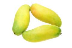 Three mangoes Royalty Free Stock Images