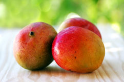 Three mangoes fruits Royalty Free Stock Photos