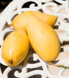 Three mangos Royalty Free Stock Photos