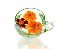 Three Marigold Flowers in the Glass Royalty Free Stock Photography