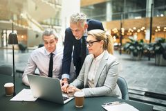 Three mature businesspeople talking together and working on a la. Three business colleagues talking together over a laptop while having a meeting at a table in stock photo