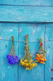 Three medical herbs flower bunch on wooden door Stock Images