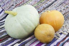 Three mellow  pumpkin. Three  mellow pumpkin on a colorful mat Royalty Free Stock Photos