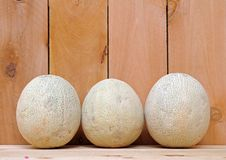 Three melons Royalty Free Stock Photography