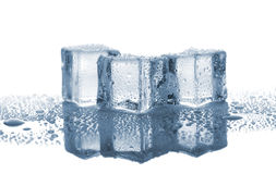 Three melted ice cubes Stock Photos