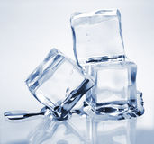 Three melting ice cubes. On glass table Stock Images