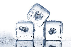 Three melting ice cubes with water dew Stock Photography