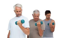 Three men exercising with dumbbells in row Royalty Free Stock Image