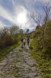 Three men walking on a path. In mountain in a sunny day Royalty Free Stock Photo