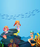 Three mermaids swimming under the ocean. Illustration Stock Photo