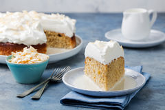 Three milk cake, tres leches cake with coconut. Traditional dessert of Latin America. Stock Photography