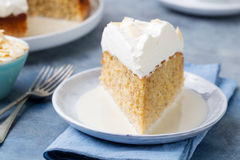 Three milk cake, tres leches cake with coconut. Traditional dessert of Latin America Stock Photo
