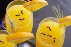 Three mimosa cocktails. High angle view of mimosa cocktails with orange juice and champagne decorated with lavender leaves and flowers and orange slices. Focus stock photography