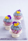 Three mini cupcakes. With buttercream topping and edible pansies Stock Photos